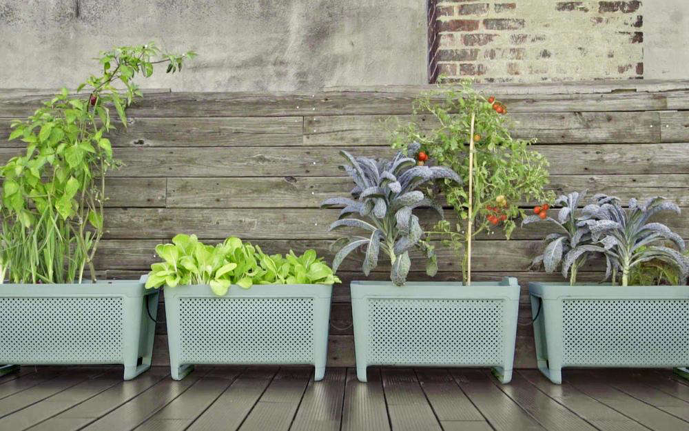 Better for balconies than countertops, the Grow Smart Vegetable Planter is an automated self-watering planter that connects to your phone for info on what to plant, when, and how to care for your plants for &#8