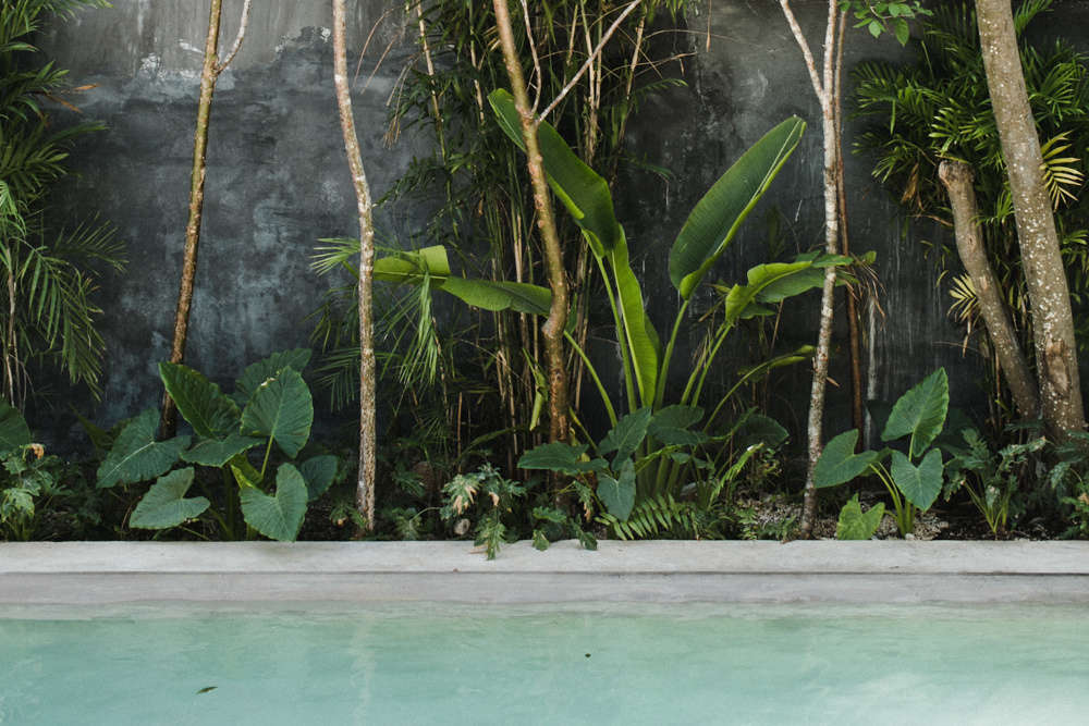 Thinking of heading to warmer climes? ConsiderCasa Pueblo in Tulum, which Fan profiled on Remodelista this week, with a saltwater pool, a jungle of tropical plants, and surprisingly affordable rates.