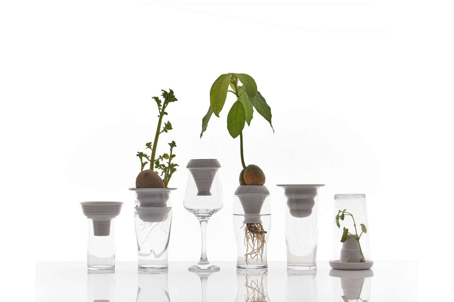 For the countertop seed sprouter, the Alicja Patanowska-designed Porcelain Hydroponic Plant Grower is a porcelain funnel that sits on the rim of a drinking glass for an instant hydroponic growing condition; $.5src=