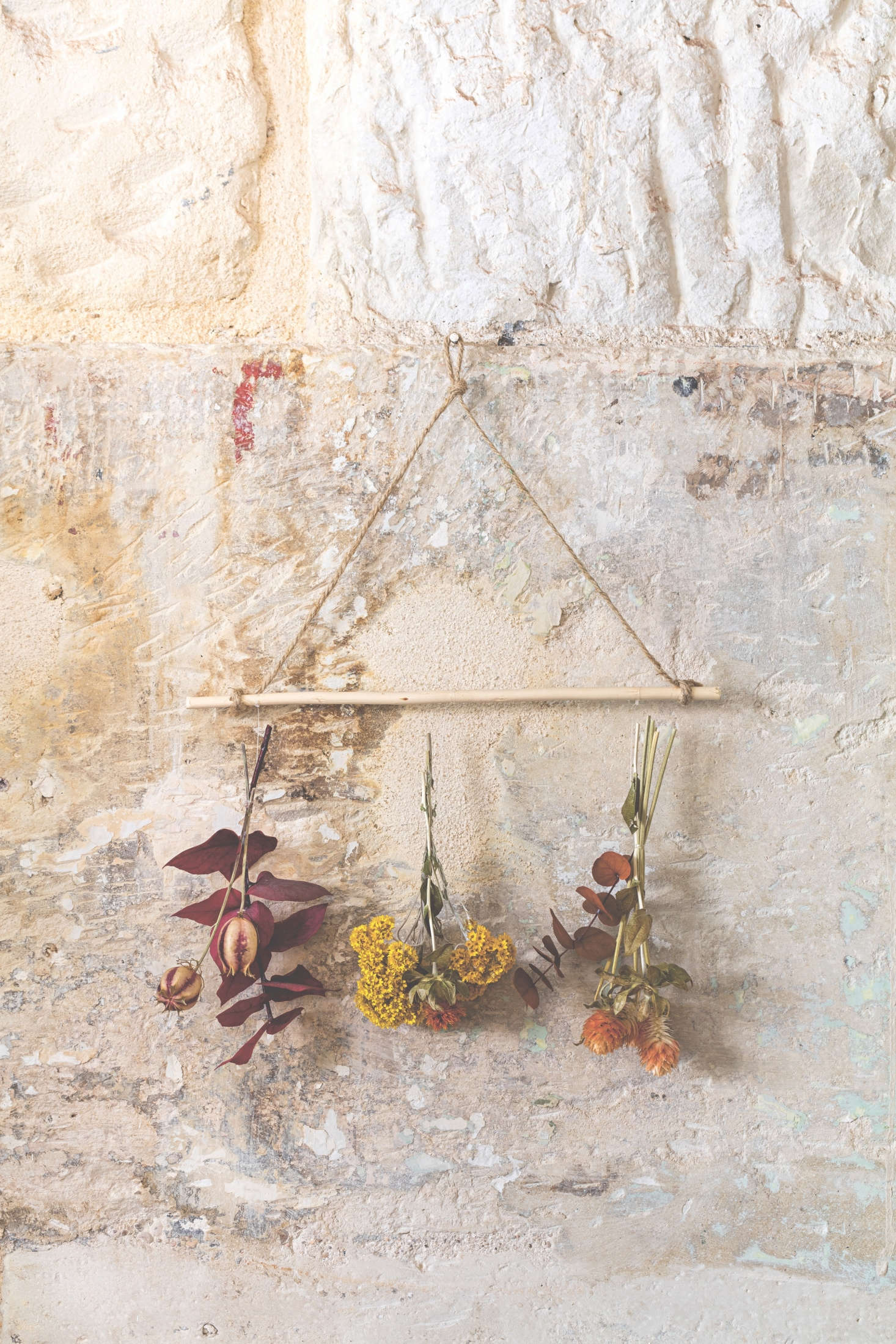 The book also shows us how to capture some of spring and summer's color-rich flowers to enjoy year round by hanging small bunches onto a simple wooden rod as a wall hanging.