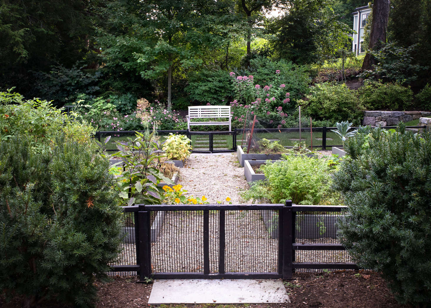 The kitchen garden, which has a number of raised beds, can be accessed from both the driveway and the lawn.