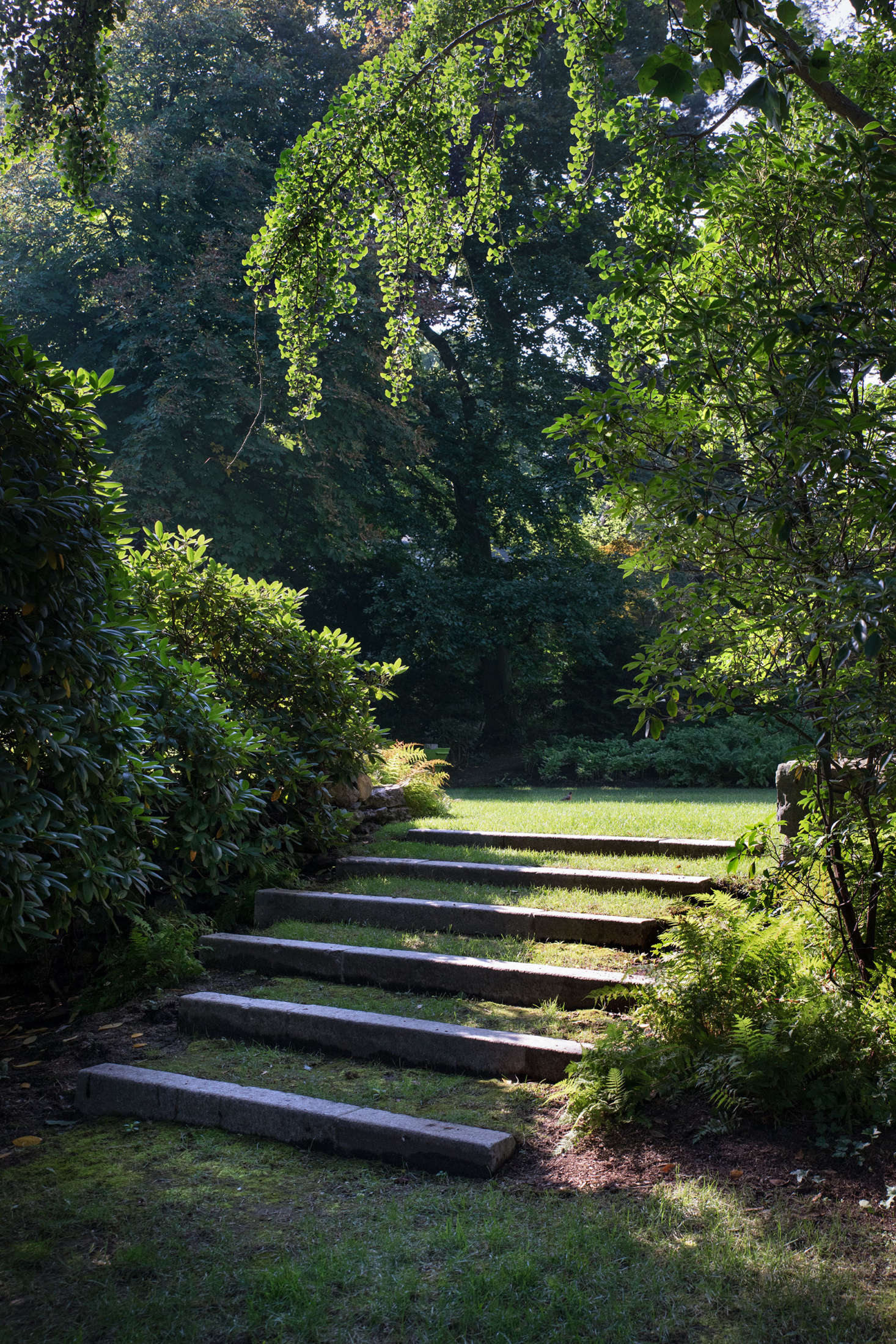 Completing the circuit around the yard, another set of inlaid stone steps leads towards the front of the house.