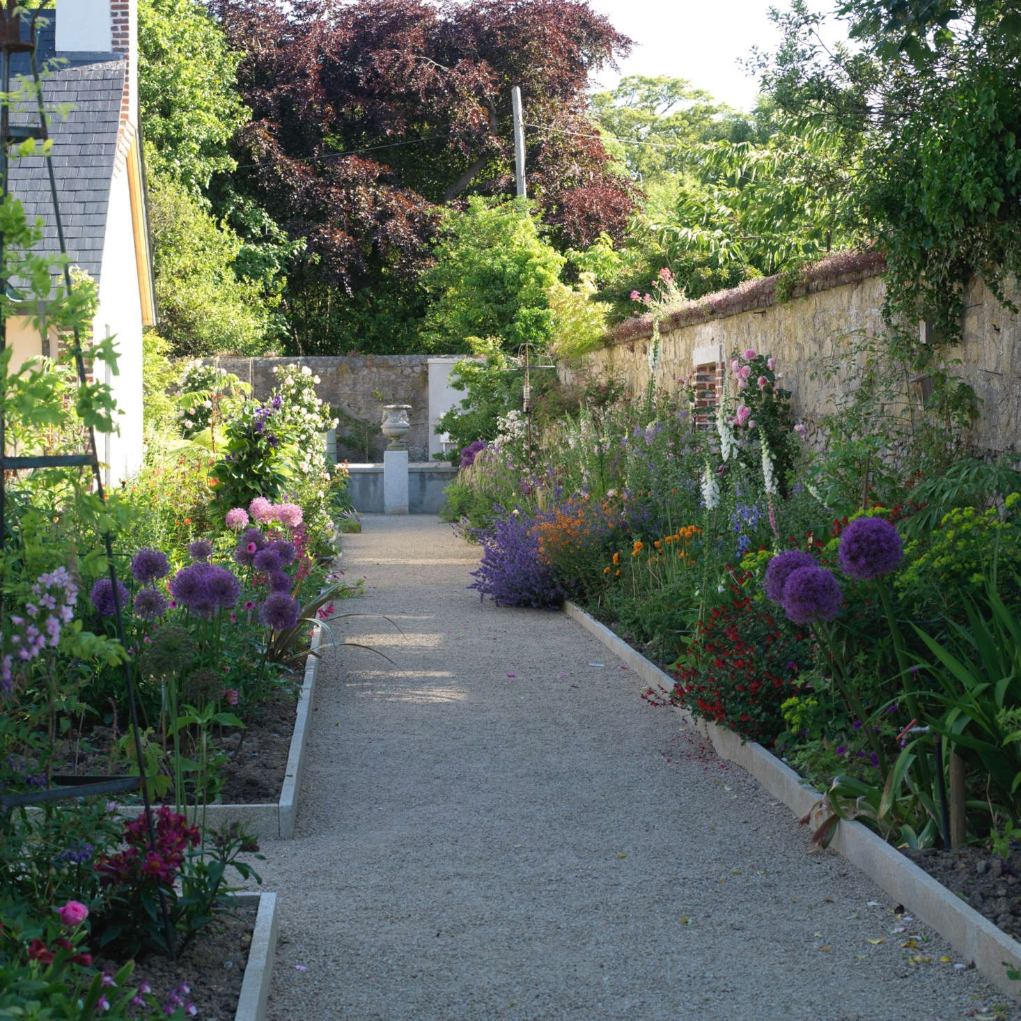 A large urn at the end of a walkway creates a visual destination. Bordering the gravel path are a mix of cottage garden favorites, including white foxgloves and purple alliums.