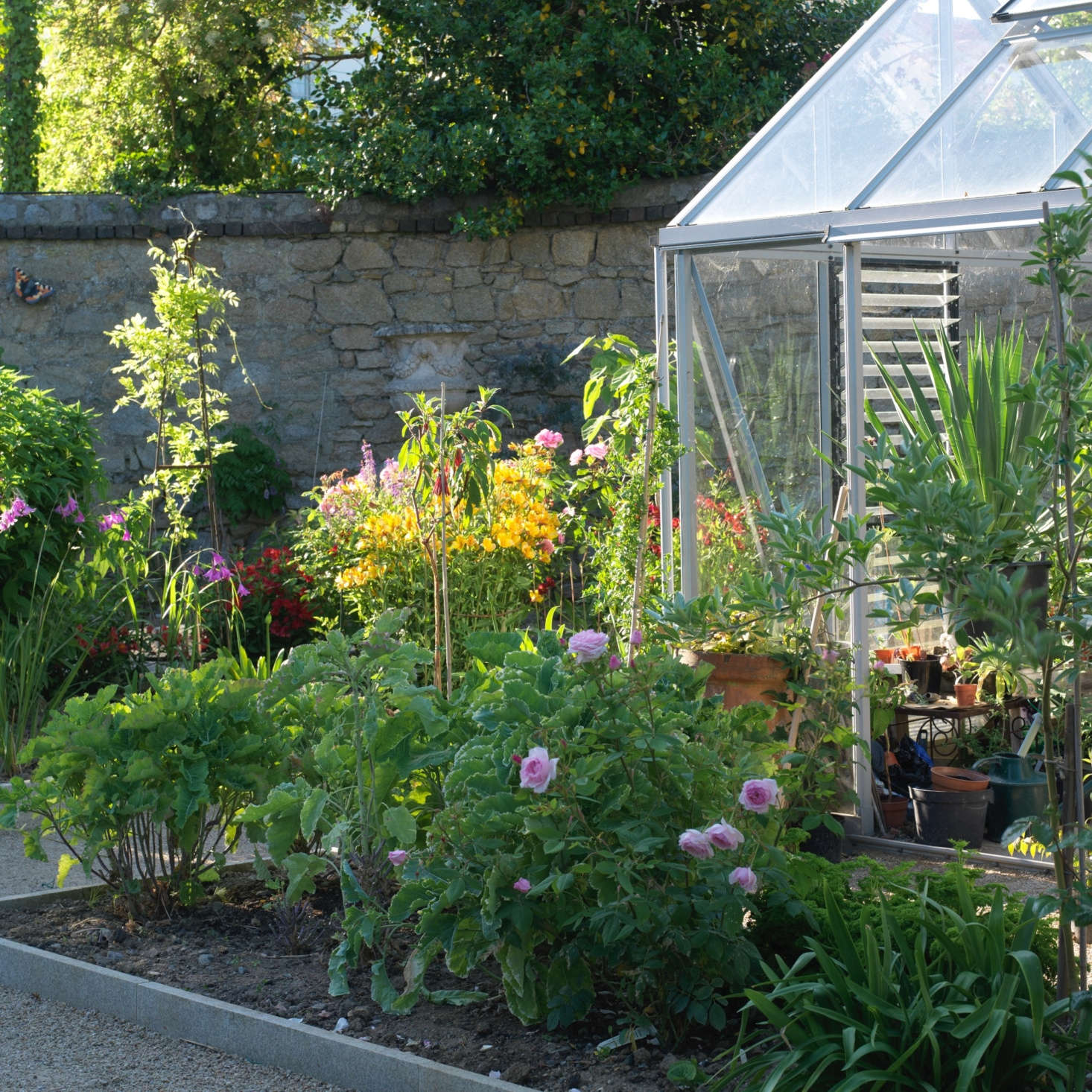 A glasshouse provides an extra layer of protection for tender tropical plants.