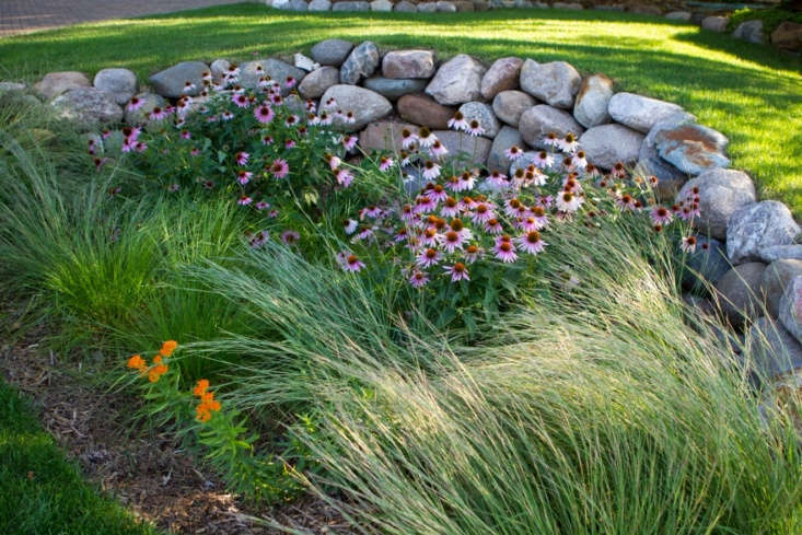 Hardscaping 101: Rain Gardens - Gardenista on burn pit design plans, raised bed vegetable garden design plans, large garden layout plans, patio garden design plans, border garden design plans, cottage garden design plans, fountain design plans, rose garden design plans, container garden design plans, butterfly garden design plans, residential landscape design plans, small garden design plans, roof garden design plans, community garden design plans, perennial garden design plans, tropical garden design plans, prairie garden design plans, design your own garden plans, small wind turbine design plans, green roof design plans,