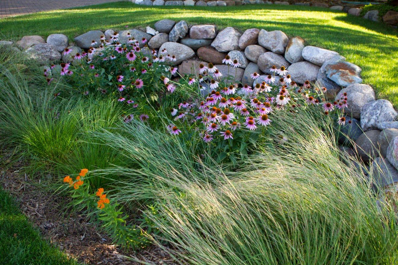 Hardscaping 101 Rain Gardens Gardenista