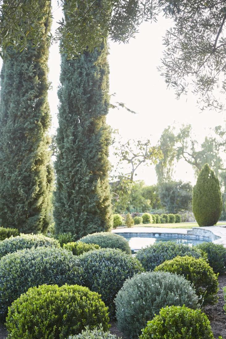 Pool in Victoria Pearson's Ojai Garden, Photograph by Victoria Pearson