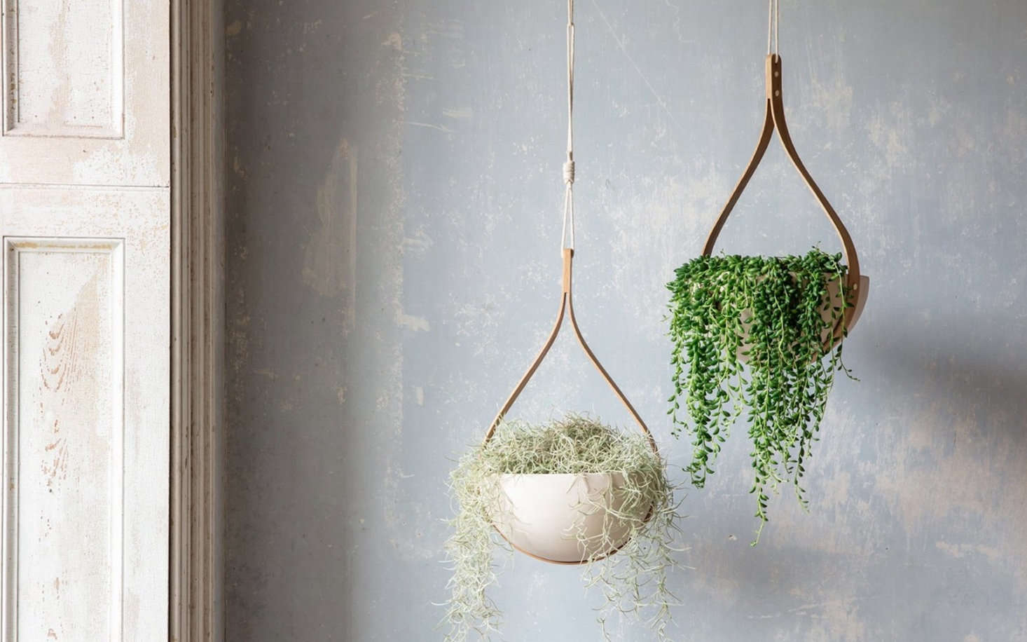 The Morvah Hanging Ceiling Planter is $£5.