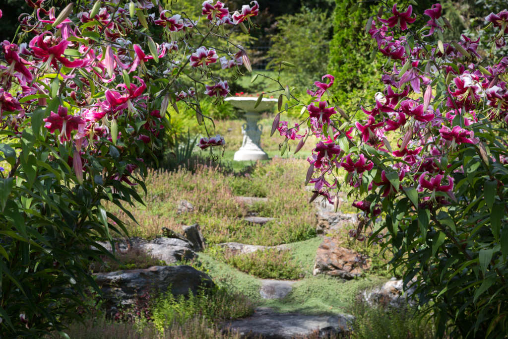 Country Garden in the Berkshire hills - Gardenista