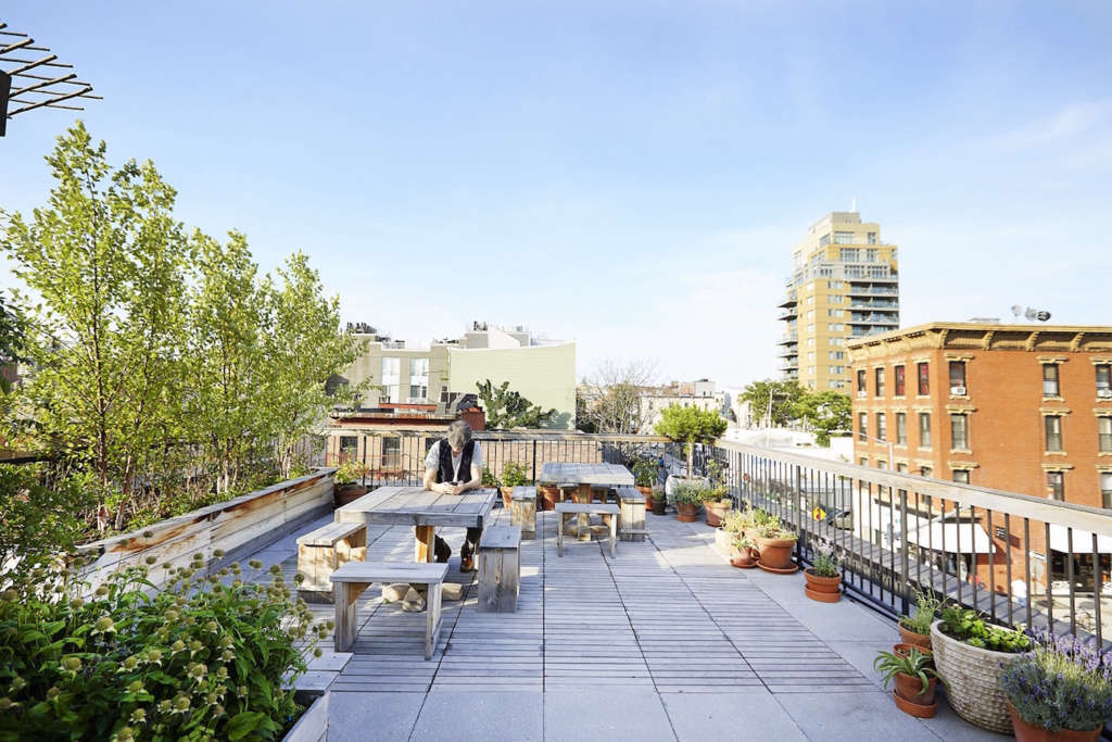A Rooftop Vegetable Garden For The Office Gardenista