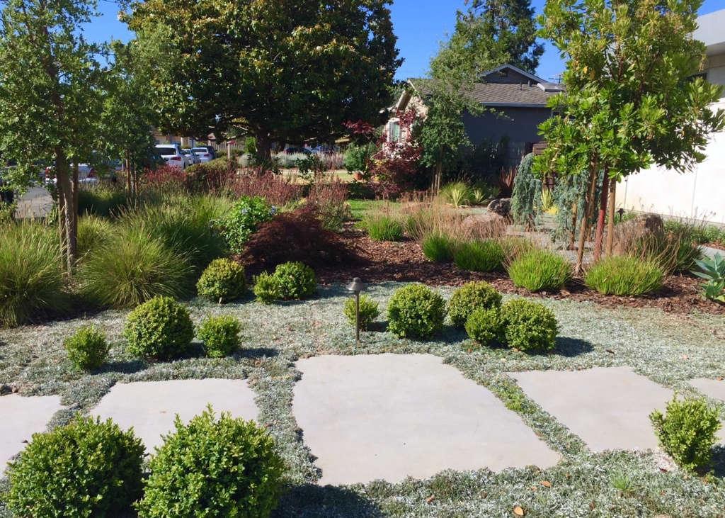 New Garden For A New House Gardenista